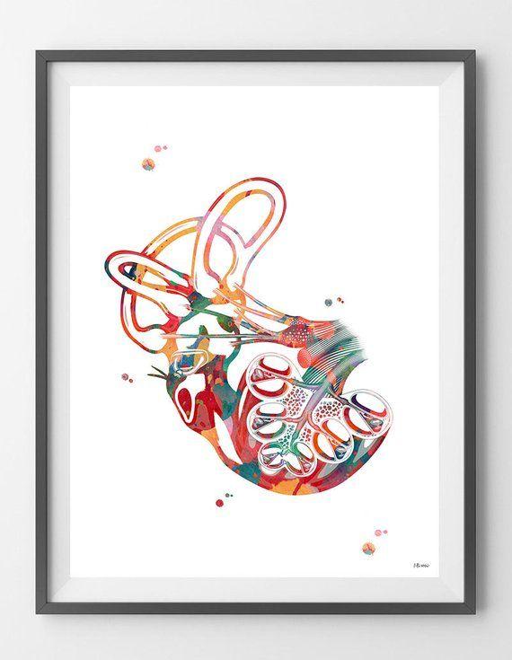 Cochlea Vestibular System Watercolor Print Ear Art Audiologist Audiology Office