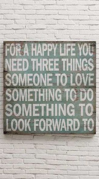 For A Happy Life You Need Three Things ❤︎ (1) Someone To Love (2) Something To Do (3) Something To Look Forward To