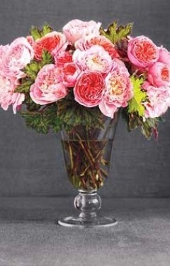 k: Cabbages Rose, Pink Flowers, Flowers Bouquets, Flowers Fresh, Flowers Arrangements, Fresh Flowers, Pink Rose, Cut Flowers, Real Simple