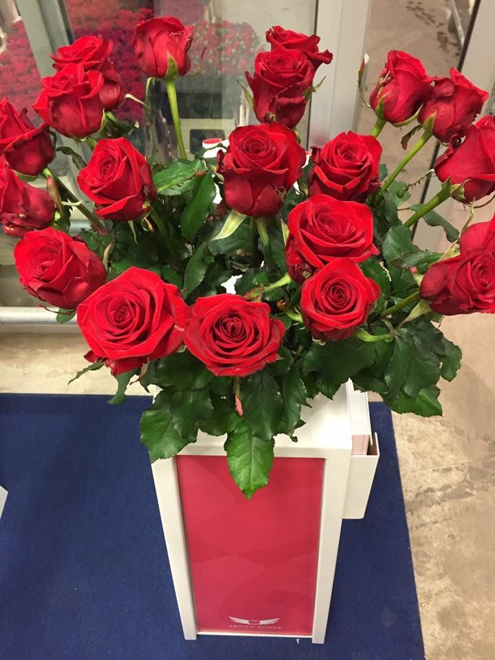 Rose Red Eagle (Arend Roses)