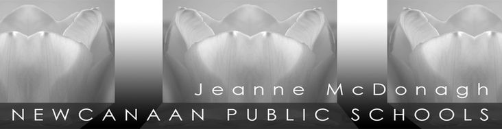 Digication e-Portfolio :: Jeanne McDonagh NCHS-Digital Media :: AP Studio Art Syllabus