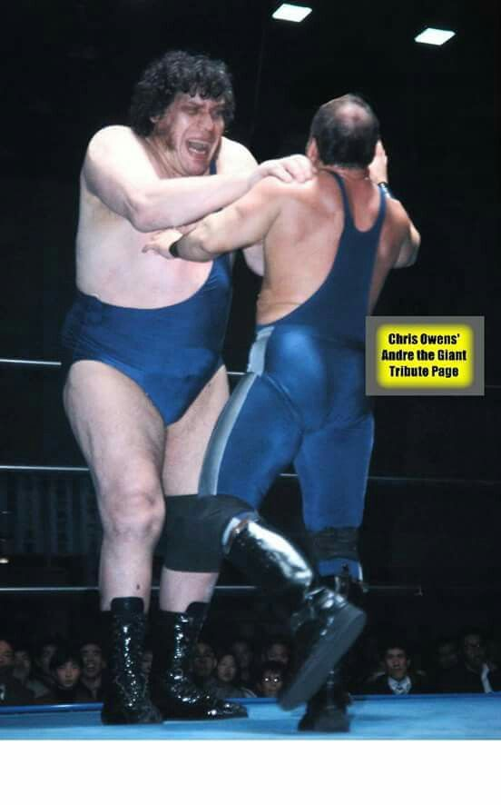 Consider, that andre the giant midget very