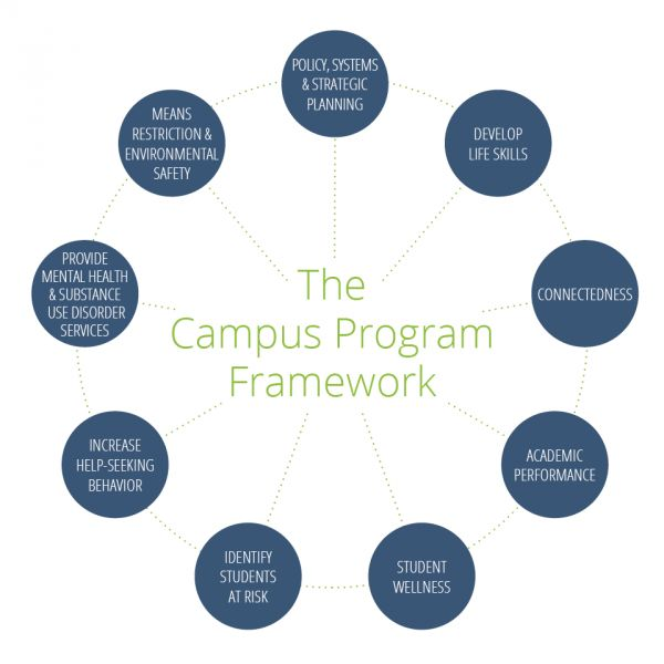 What a successful university mental health program looks like