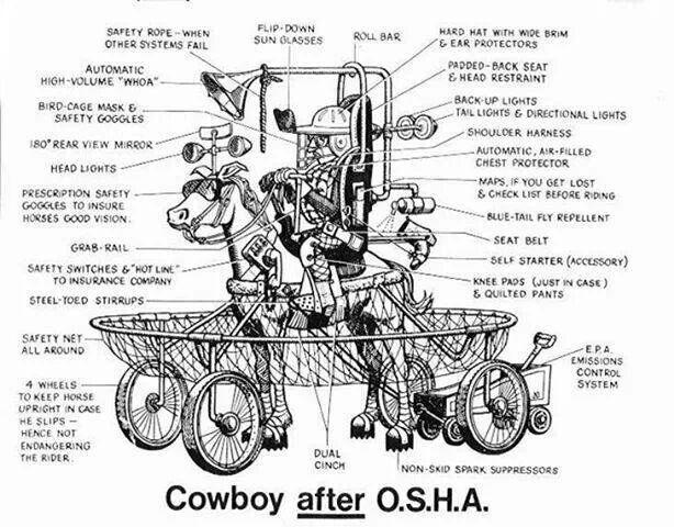 Cowboys After Osha  Horses