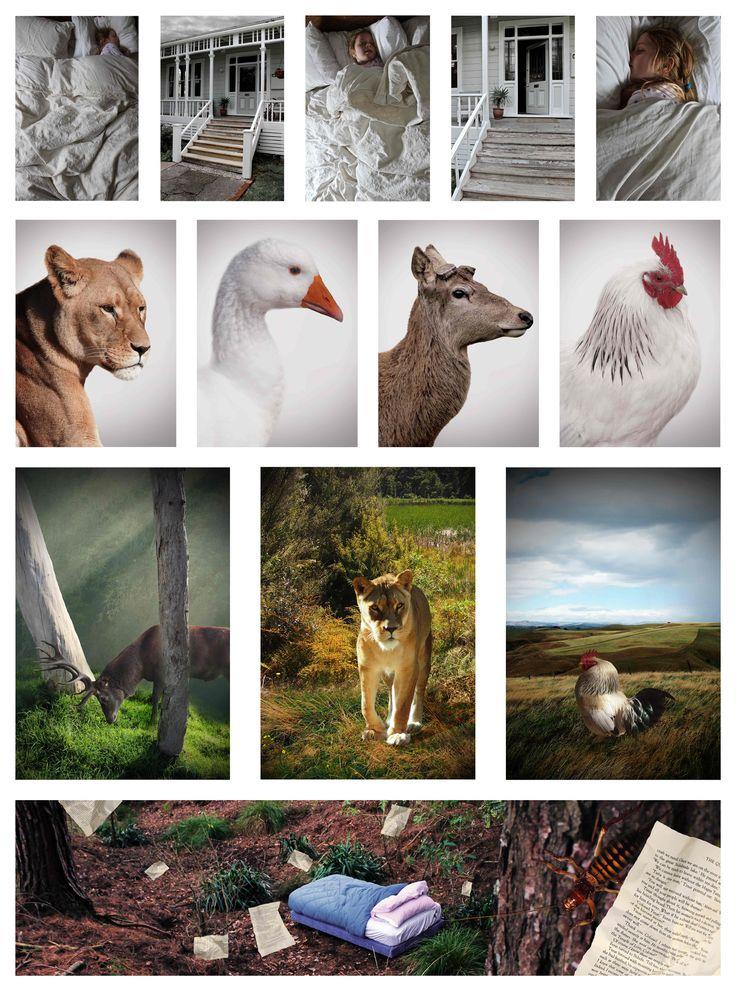 Dominic Cotter Dephoff Tararua College Level 3 Photography Folio Board 1
