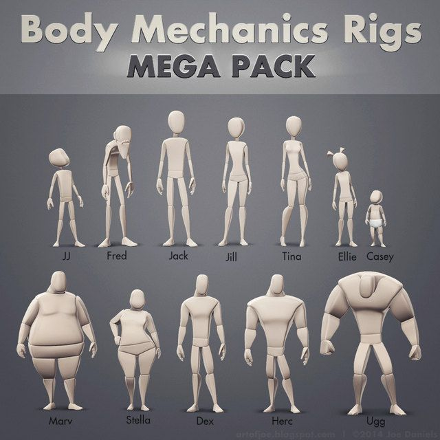 Body mechanics Rigs