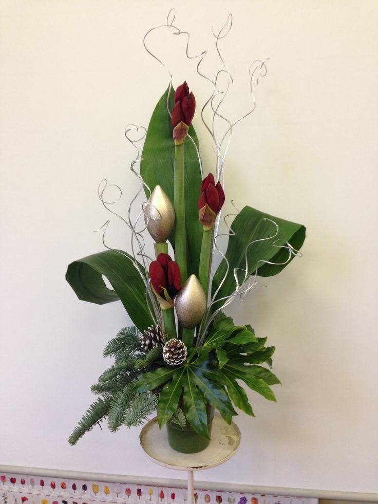 Amaryllis Christmas flower display.