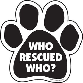 25 Best Images About Rescue Me On Pinterest Window