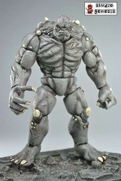 Dawn of Justice Batman Vs Superman Doomsday (DC Universe) Custom Action Figure