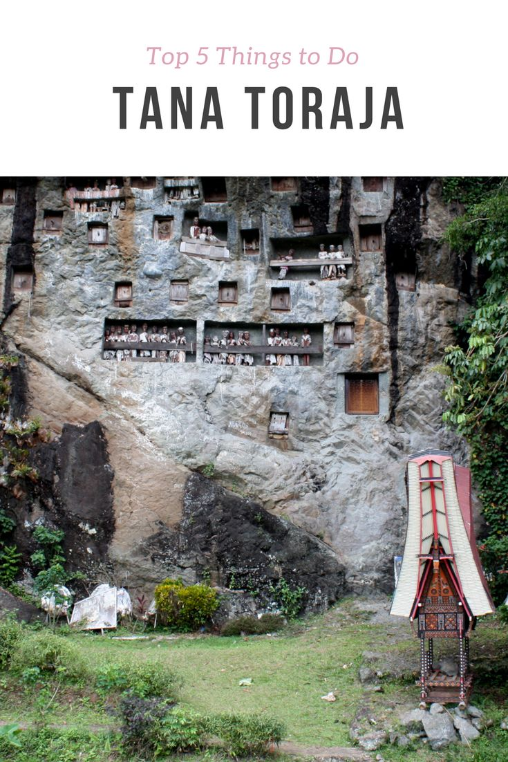Tana Toraja, Sulawesi - Top 5 Things to do in Tana Toraja. Most people make their way to this remote location to take part and view the famous ancient burial rites.