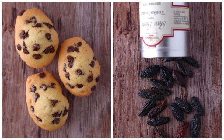 Les madeleines : la recette ultime !