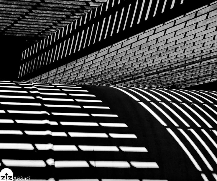 Lines Shadow