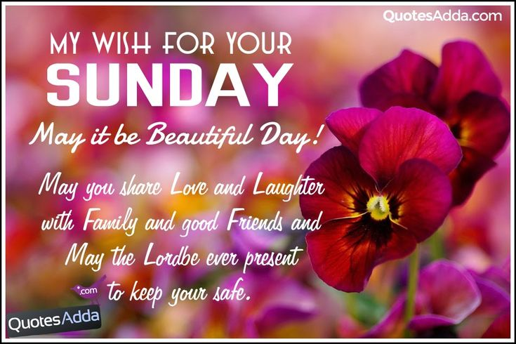 Happy Sunday Greetings | Happy Sunday Good Morning Quotes and Pictures to Share | Quotes Adda ...
