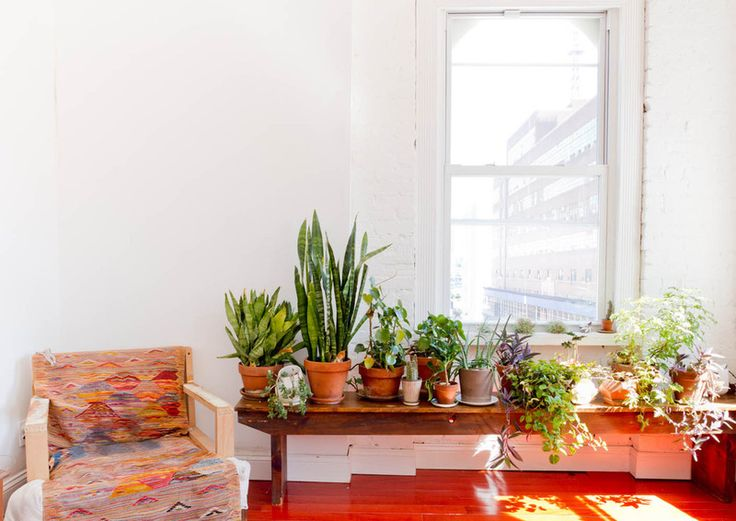 472 best indoor gardens images on Pinterest Plants Home and