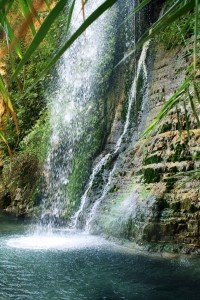David's Waterfall is one of the most popular hiking destinations at En Gedi Nature Reserve and National Park. This oasis provides rare relief from Israel's desert temperatures.