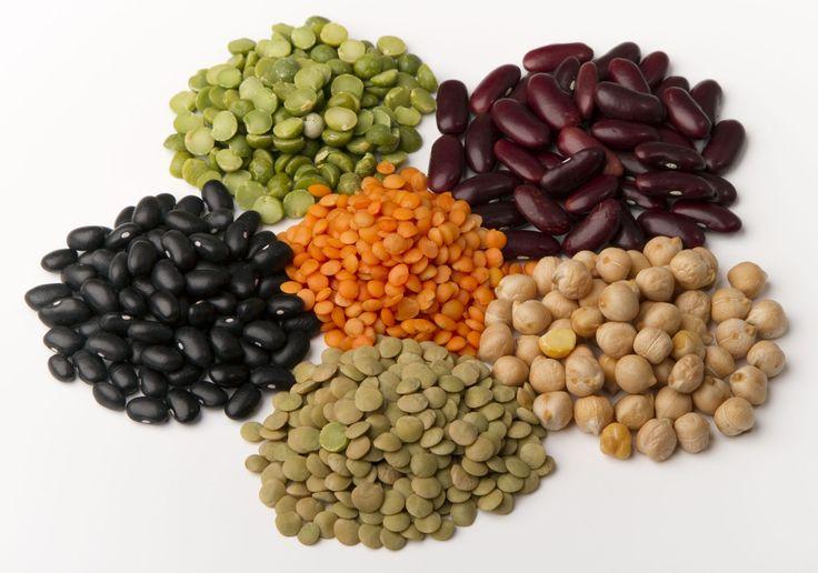 Luštěniny jsou velmi důležitou azdravou součástí jídelníčku. Své tělo…
