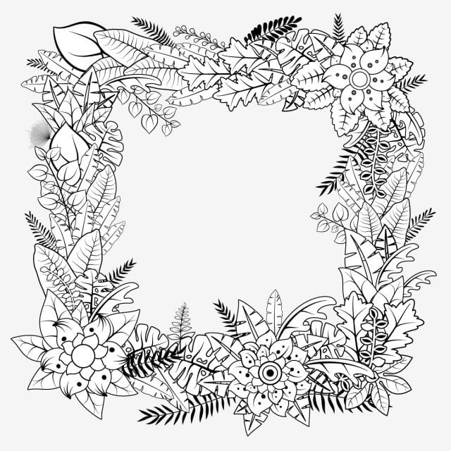 Doodle Tropical Plants Hollow Square Frame Border Black White Vector Hollow Flowers Leaves Png And Vector With Transparent Background For Free Download Square Frames Watercolor Flower Background Tropical Plants