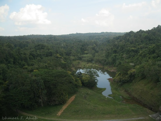 View of still lush forest on the top of Chulabhorn Dam in Chaiyaphum Province, Thailand.