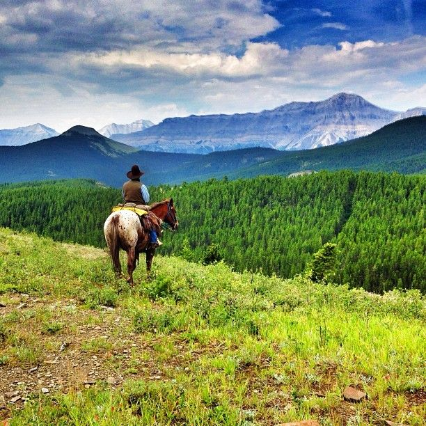 Ride a horse in the High Mountains. Southern Alberta is often overlooked when traveling to this Canadian Province, but it shouldn't be missed. Get yourself to the Anchor D Ranch and do a high mountain trail ride to take in the extraordinary view of the Rocky Mountains. Read more at: A High Mountain Trail Ride, your Buns have come a long way baby! http://theplanetd.com/a-high-mountain-trail-ride-youre-buns-have-come-a-long-way-baby/ Discovered by The Planet D at Black Diamond, Alberta