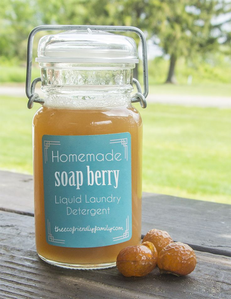 Homemade Liquid Soap Nuts Laundry Detergent  Ingredients:  1 cup Eco Nuts* berries (approx. 2 oz) 4 cups Water 1/2 cup Vinegar (natural preservative)
