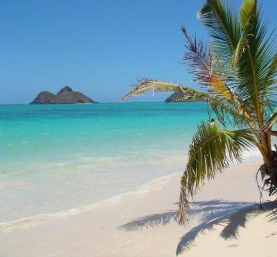 【ハワイ・オアフ島】ワイキキビーチだけじゃない!オアフ島おすすめビーチ5選