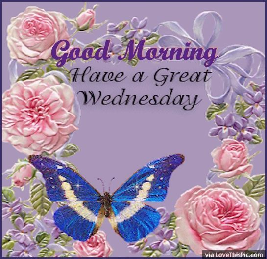 Good Morning Have A Great Wednesday Quote good morning wednesday hump day wednesday quotes good morning quotes happy wednesday good morning wednesday wednesday quote happy wednesday quotes