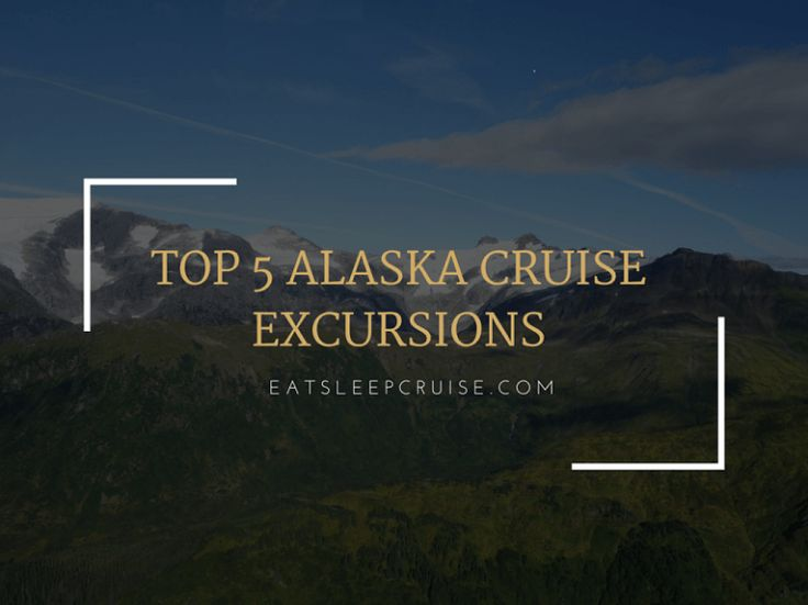 Our Top 5 Alaska Cruise Excursions
