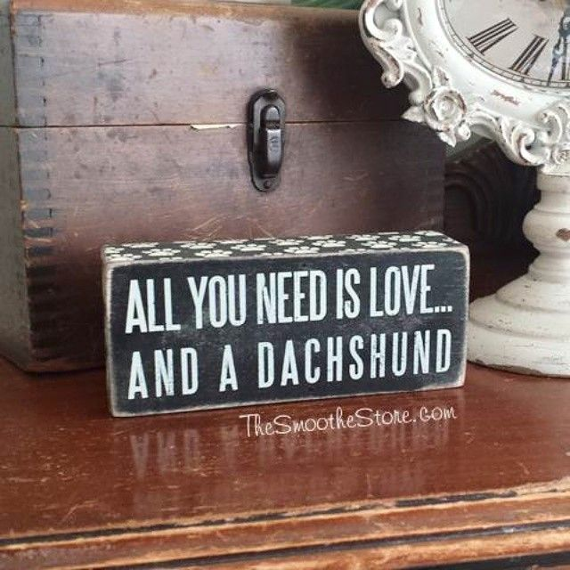 Dachshund lovers know this statement to be all too true. I love waking up to this sign on my dresser and a little wet nose next time.