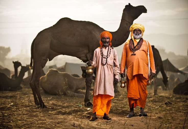 Every year in November thousands of Gypsies and Camel traders descend upon the holy town of Pushkar, Rajasthan to trade their wares in a sort of apocalyptic desert carnival. a true Indian circus