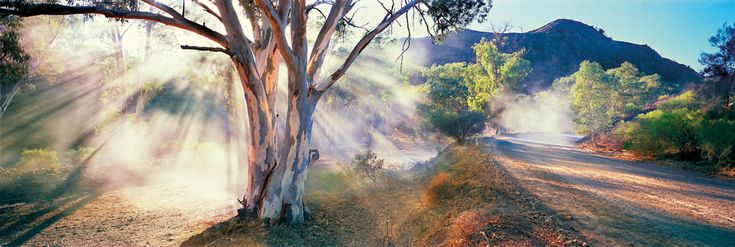 South Australian bushland by the amazing Ken Duncan :)