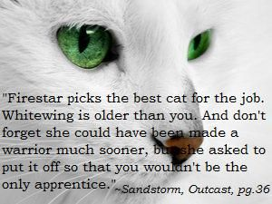Warrior Cats Quotes And Sayings. QuotesGram