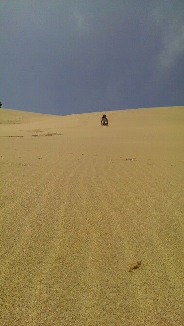 Sliding down from the dune