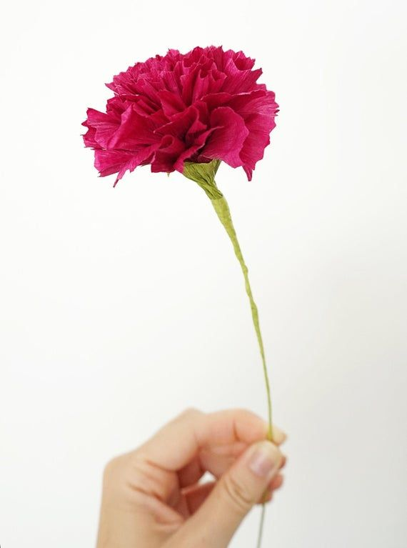 Classic Carnation Handmade Crepe Paper Flower Paper Flowers Crepe Paper Carnations