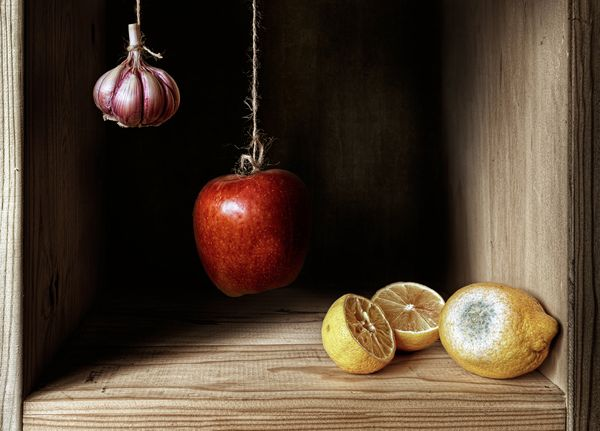 10 amazing still life photography ideas you should try right now | Digital Camera World - page 5