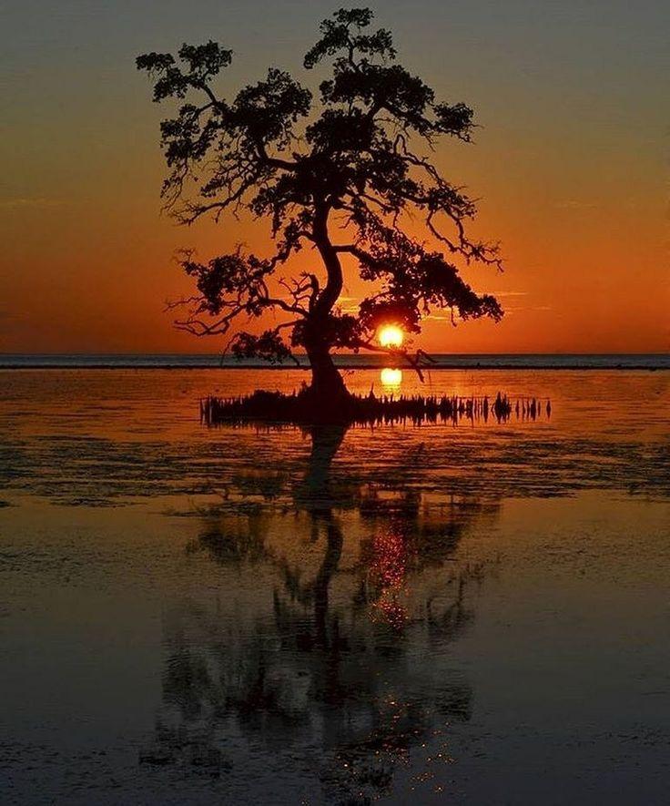 Every sunset brings the promise of a new dawn. Double Tap if You Agree...  Location : Kokar Beach - Alor - Nusa Tenggara Timur  Photo by @riyan_p_pally  #pulaualor #alorisland #explorealor #ekspedisialor #wonderfulindonesi #indonesia #tukangjalantrip #tukangjalan #TjAlorEscape #indonesian #pesonaindonesia #explorenusantara #traveling #tour #vacations2017 #instagram #jalanjalan #tour #wisataalam