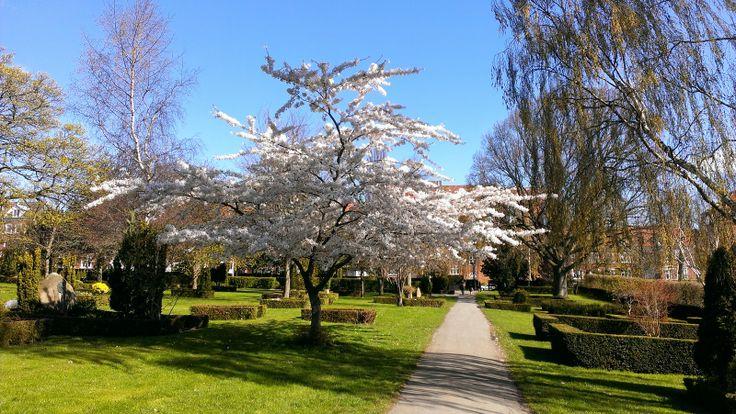 Mølgaards blog: PåskehyggeHar virkelig nydt det gode vejr med at ...