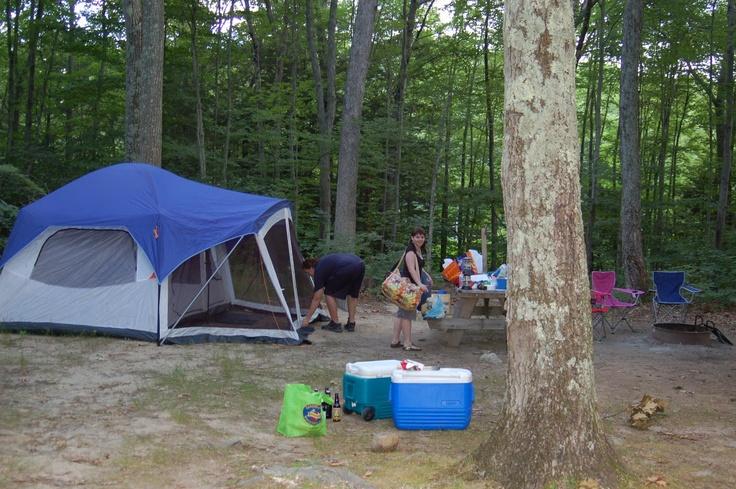 Mashamoquet Brook State Park Camping In Pomfret Ct 3