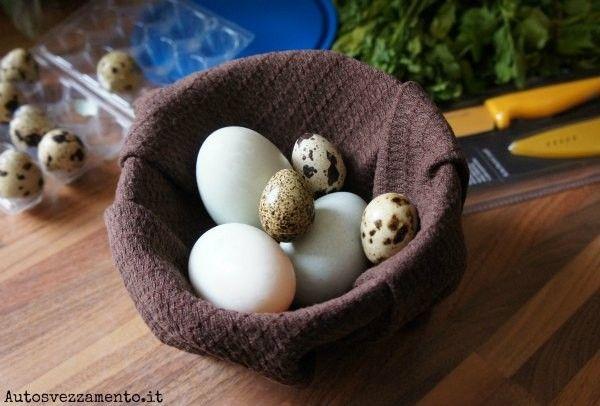 Uova e svezzamento: tempi, info e ricette