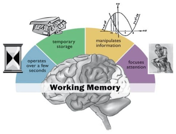 "this is excellent!! visual depiction of working memory..... ....Follow for Free ""too-neat-not-to-keep"" teaching tools & other fun stuff :)"