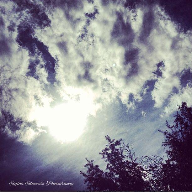Sky #sky #sun #trees