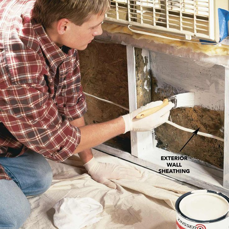 Mold Remediation How to Remove Mold Cleaning painted