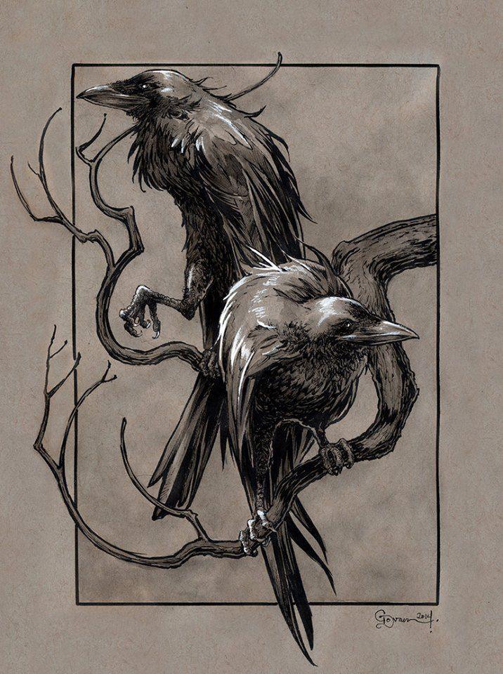 Great Odin's Ravens!