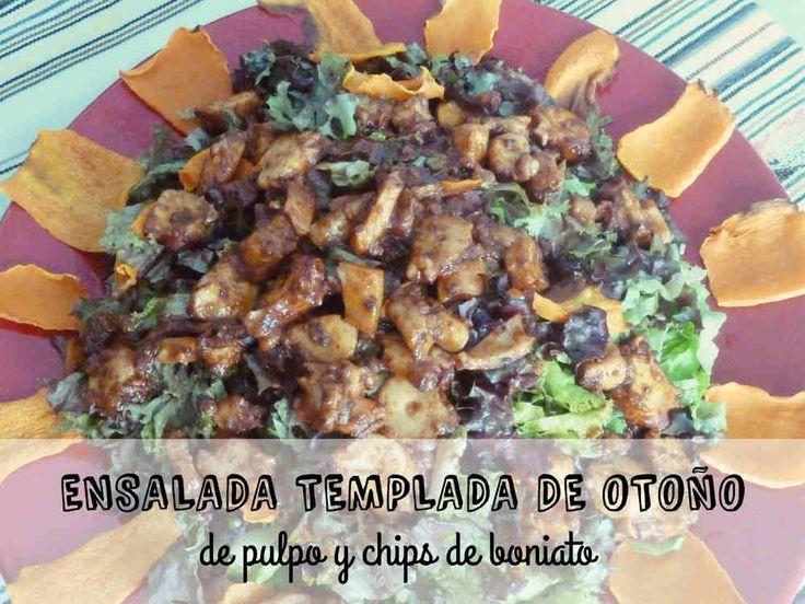 ENSALADA TEMPLADA DE OTOÑO, de pulpo y chips de boniato