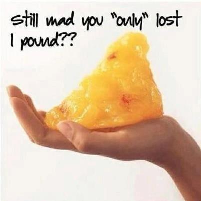 1 Pound of Fat Visual.....