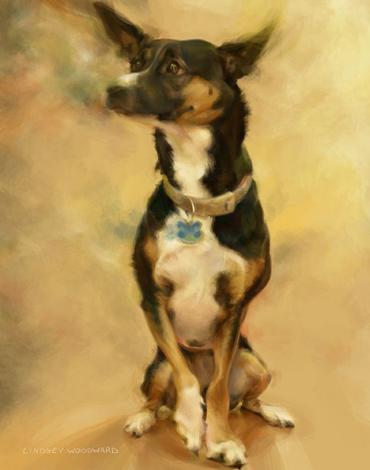 This is a commissioned pet portrait by Lindsey Lively.  It's painted digitally.  You can see more of Lindsey's artwork at her Facebook page: www.facebook.com/lindseylivelyart