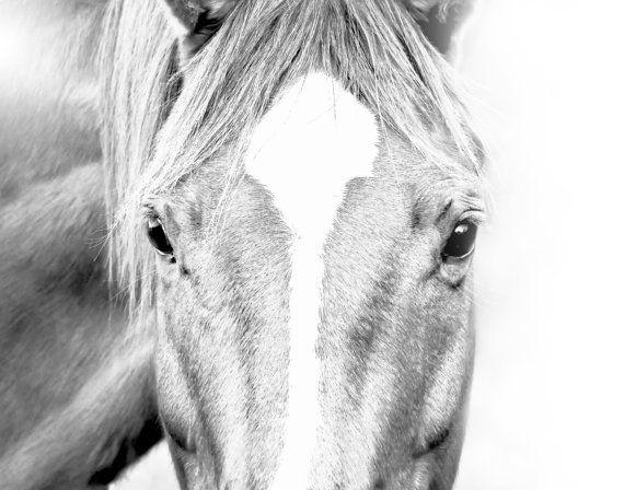 Paard Print paard kunst paard fotografie zwart-wit door foxdesigns91