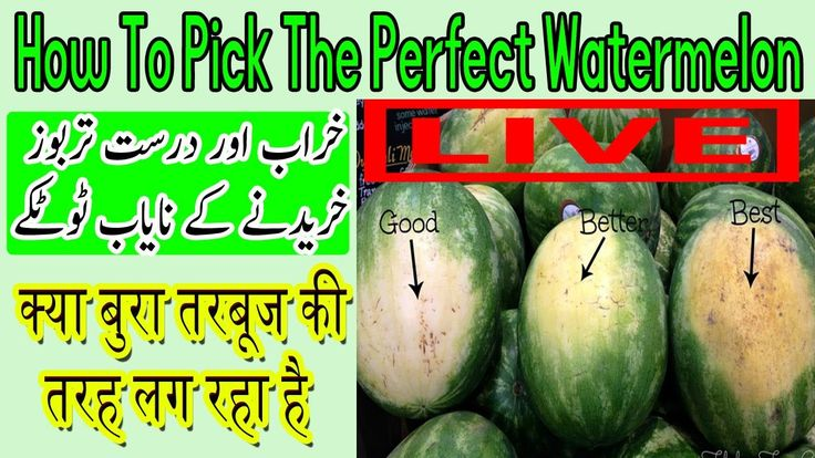 How To Pick the Perfect Watermelon In Hindi | How to Pick a Watermelon S...