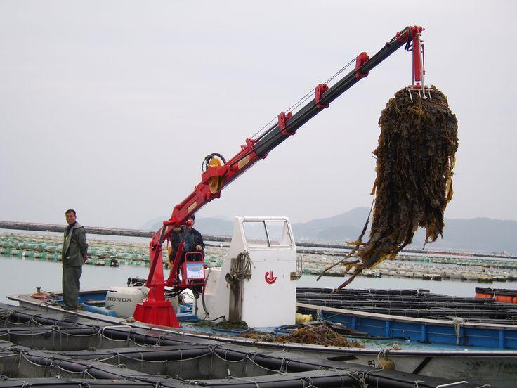 Newtec Co., Ltd. is one of enterprises leading the mechanization of aquaculture industry in Korea.