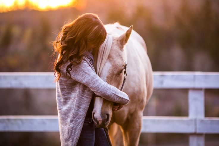 (Peggy and Breeze- and a sunrise) » Danique Rowsell Photography