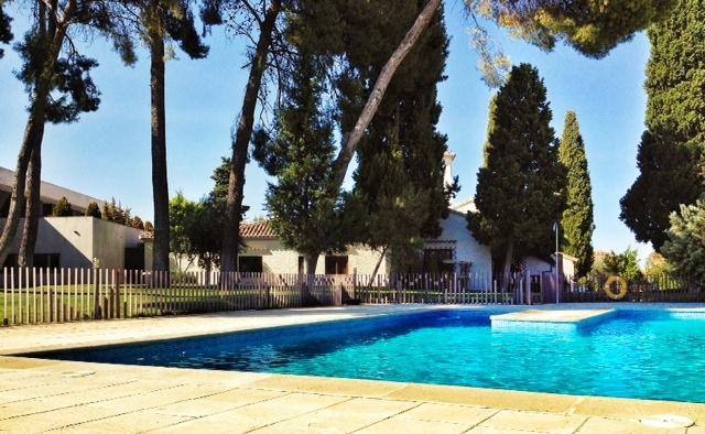 Hotel La Salve - Torrijos (Toledo) - Piscina